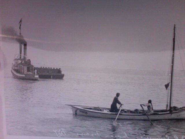 Native Fisheries