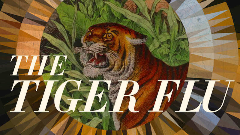 The Tiger Flu - a novel by Larissa Lai