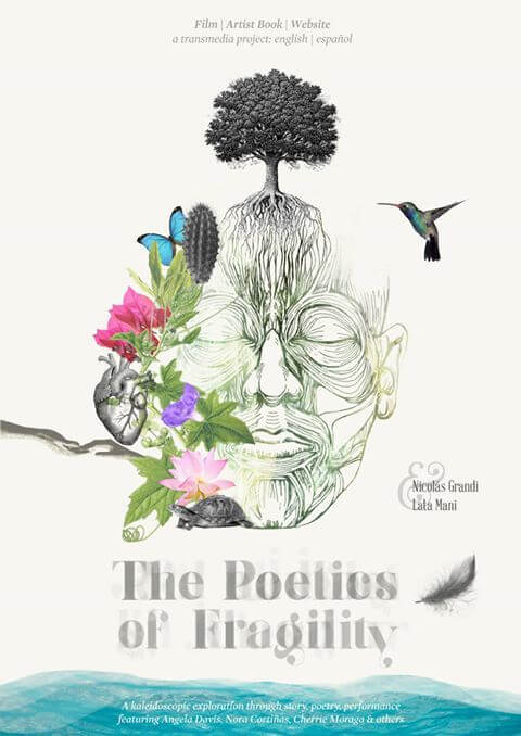 The Poetics of Fragility poster