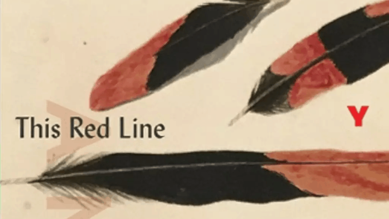 This Red Line Goes Straight to the Heart